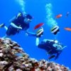 Where to Go Scuba Diving in Bali?
